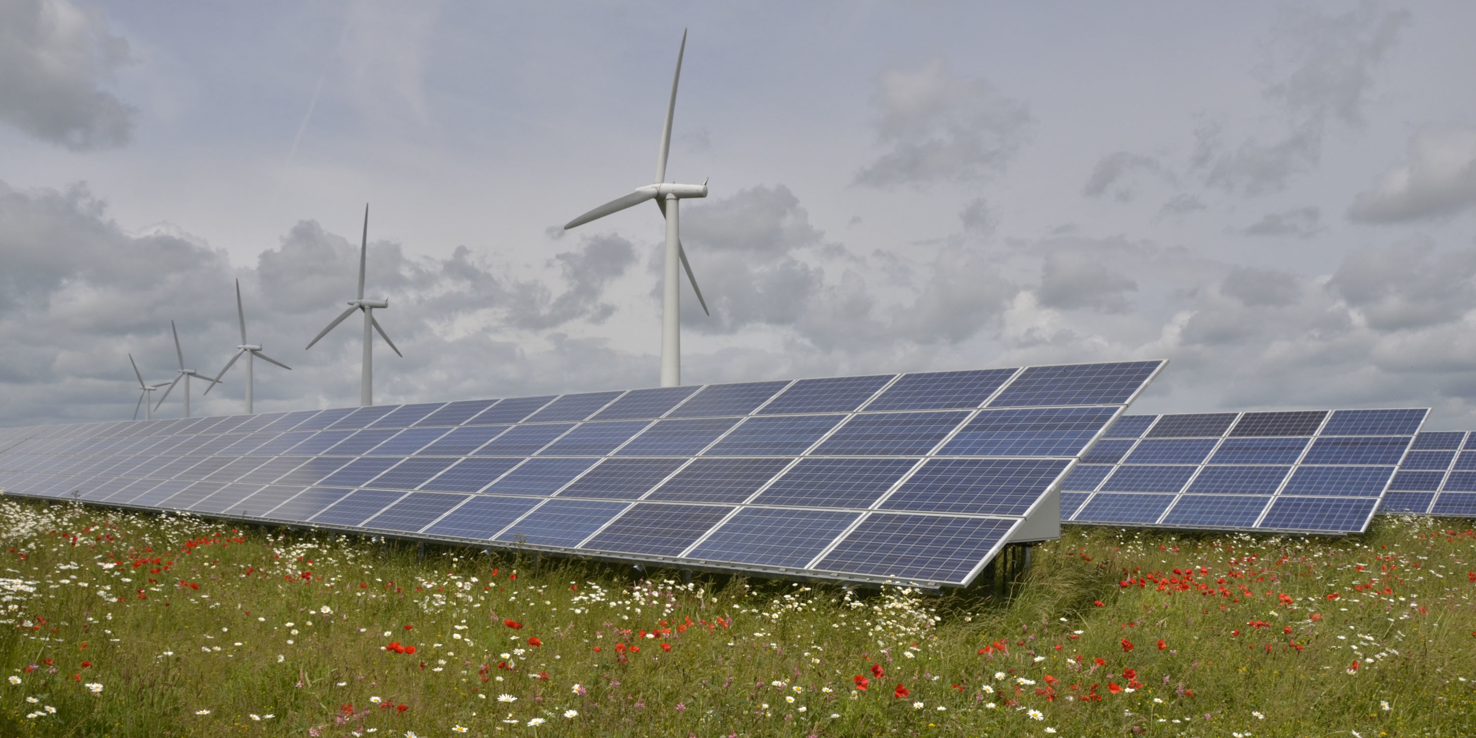 Westmill Sustainable Energy Trust